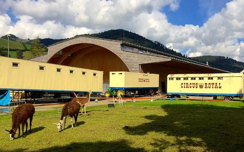 Der Zirkus in Wattwil