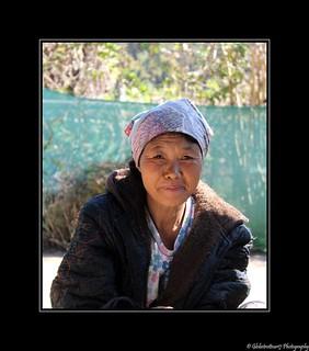 Femme d'origine chinoise- Moo Ban Rak Thai- Northwest Thailand- Thaïlande