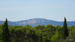Teyran - Photo of Saint-Drézéry
