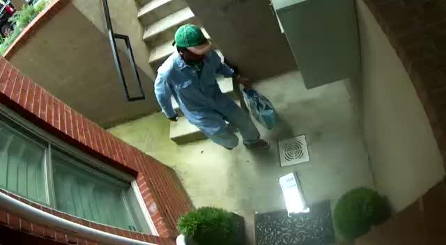 180820 - 1400 Block Corcoran NW Stolen Package Video 1