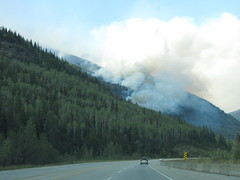 Wildfire close to the highway on the drive home