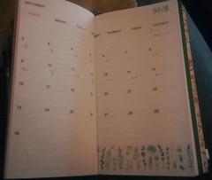 Pine Book Free Diary Washi Tape Set