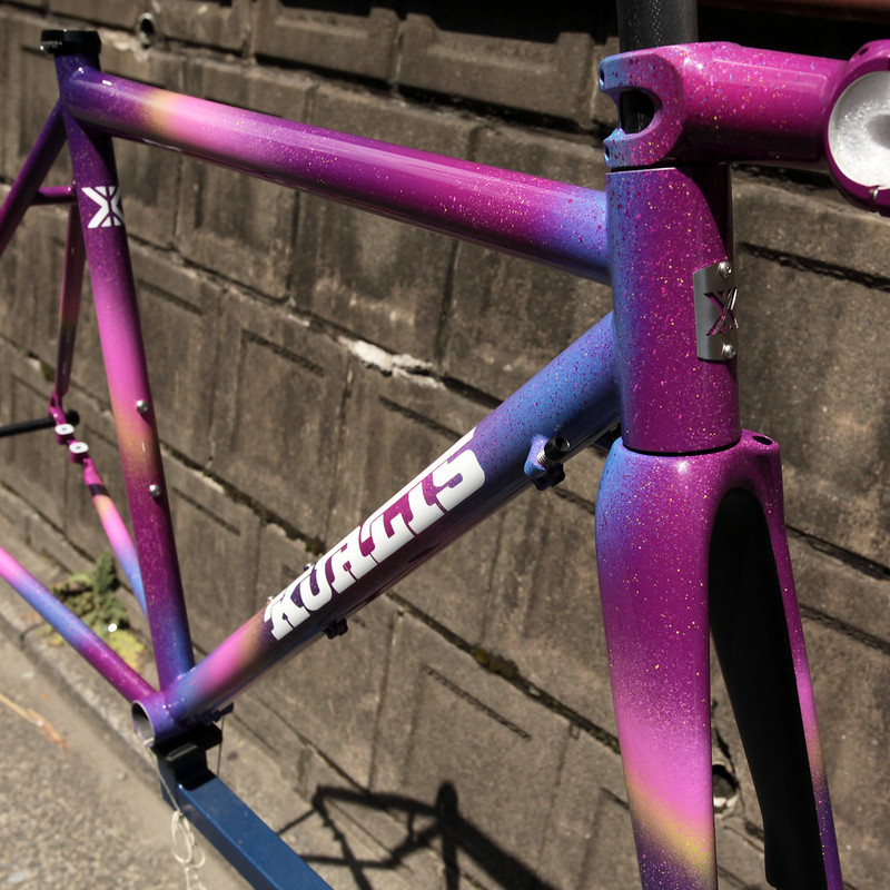 Kualis Cycles Steel Road Frame & Enve Carbon Fork & THOMSON STEM Painted by Swamp Things.