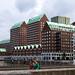 Rotterdam Green roofs - TKF