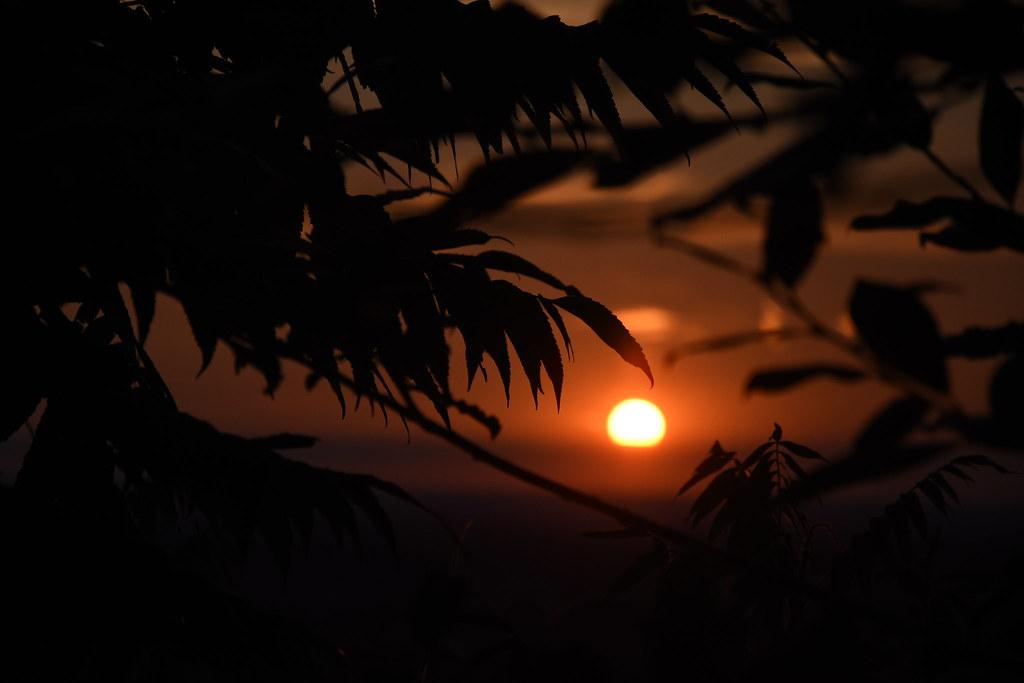 Puesta de sol_A última hora_Sonia Pérez.jpg