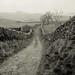 Goat Scar Lane in mist by Kevin J Allan
