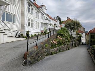 Bergen landscape above the town