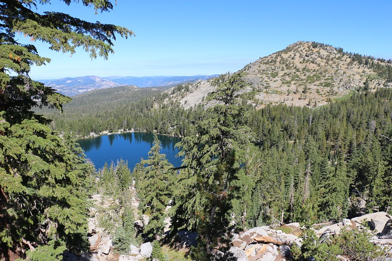 We climbed a ridge above the Tahoe-Yosemite Trail near Phipps Pass and got a great view of Phipps Lake