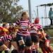Peterborough Ladies VS Shelford Ladies Rugby Team Game  09-09-2018 (1212)