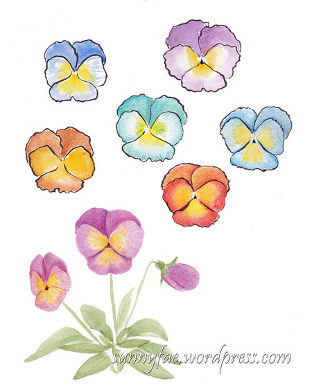 more watercolour pansies and heads