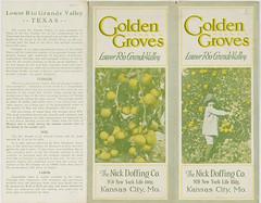 Golden Groves : Lower Rio Grande Valley