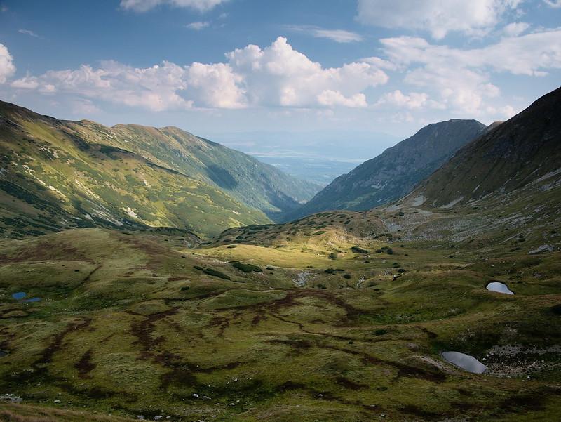 Tatry Zachodnie pies dolina kamienista