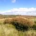 Stevenston Irvine Panoramic (30)