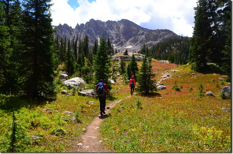 Willow Lakes Trail (20)