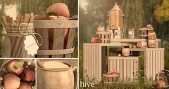hive // homemade apple cider set | collabor88