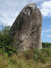Le menhir dit « La Pierre Longue » près de Pluherlin - Morbihan - Août 2018 - 07