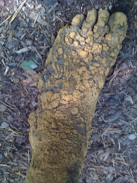 Barfusspark, Apple iPhone 3G