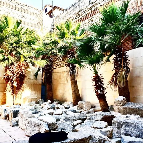Spalato: palazzo di Diocleziano