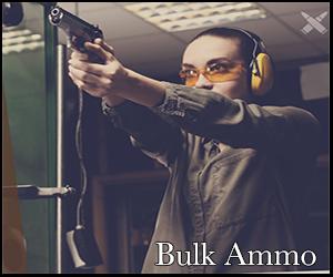 ammo in bulk