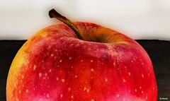 Half of an apple - Photo of Tourville-en-Auge