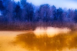 Experimental picture - Omgeving Lutterzandweg - De Lutte