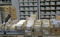 All field packages are organized in paper labelled envelopes to be inserted in the main collection