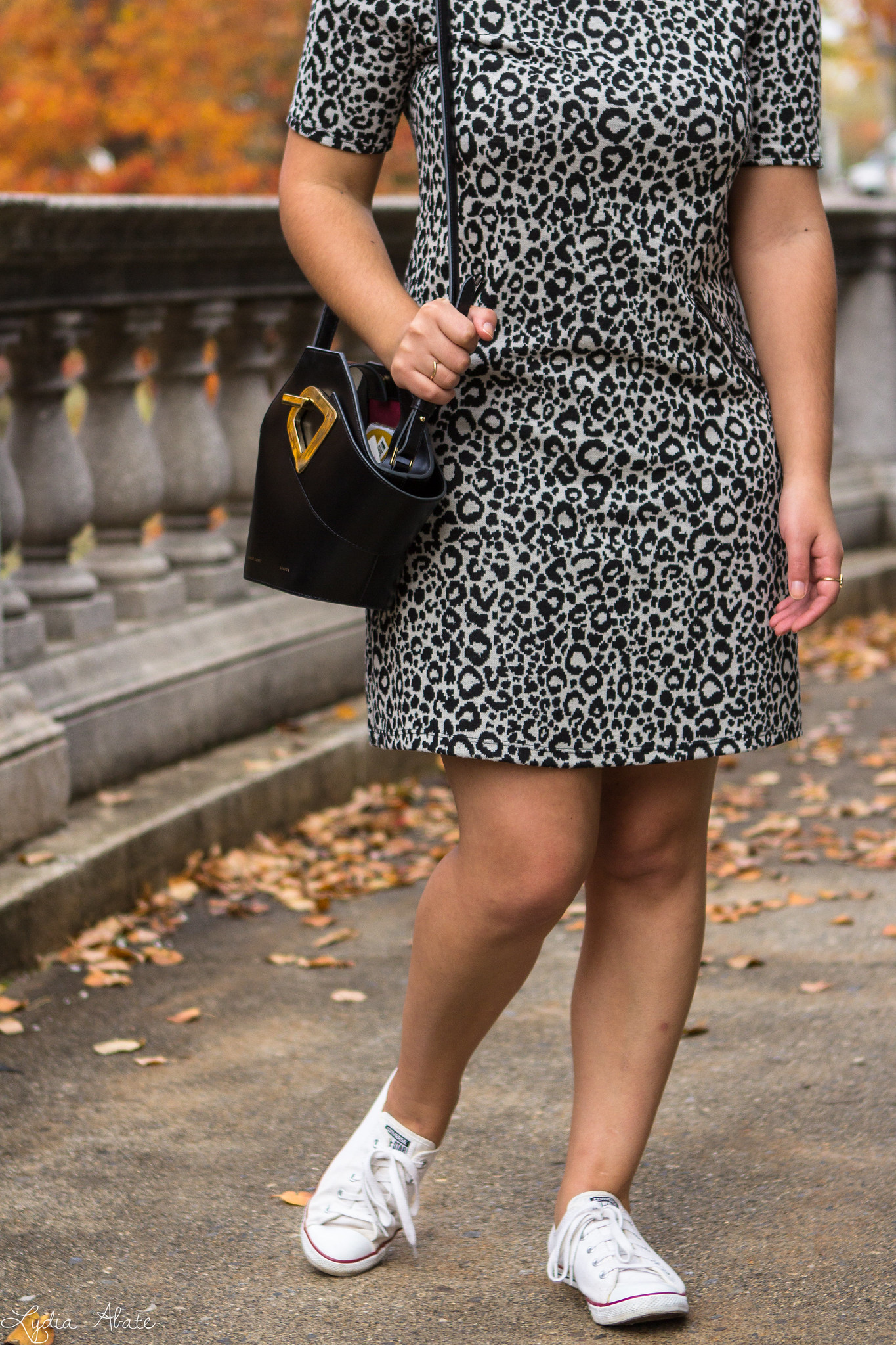 Leopard Dress, Converse Sneakers, Danse Lente Bucket Bag-7.jpg
