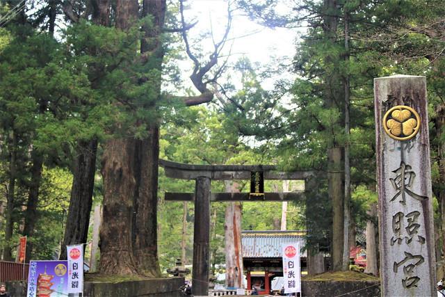 nikkotoshogu008