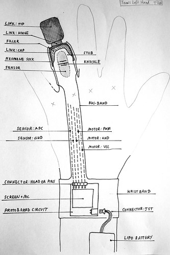 Limb link sketch