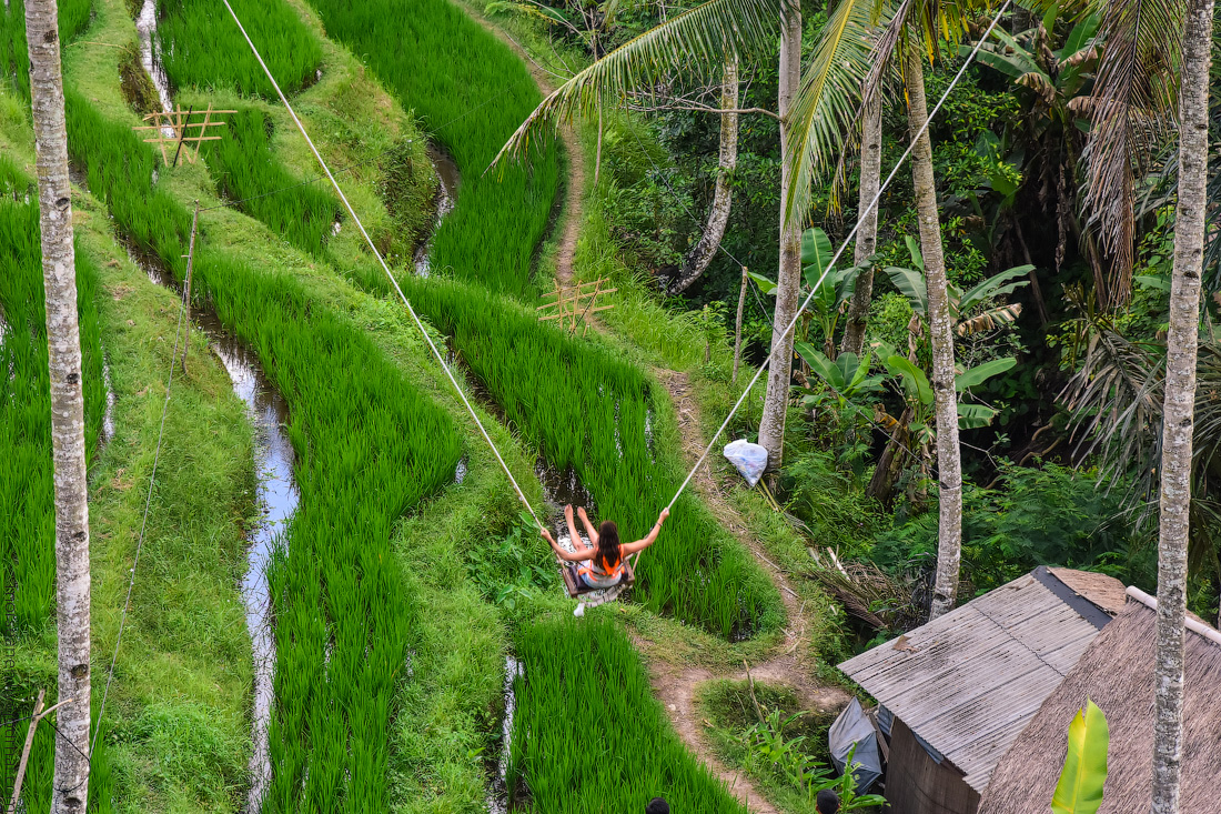 Ubud-Intertainment-(16)