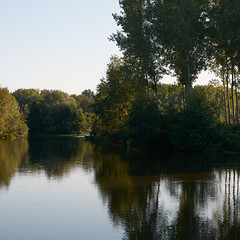 Un soir sur l'Yonne - Photo of Coulanges-la-Vineuse