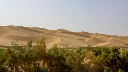 Taklamakan Desert 塔克拉瑪干沙漠