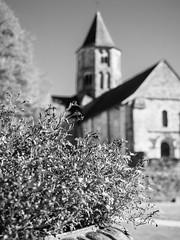 Eglise de Jumilhac-le-grand