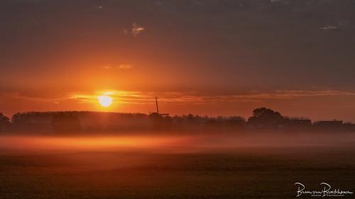Foggy Monday Sunrise