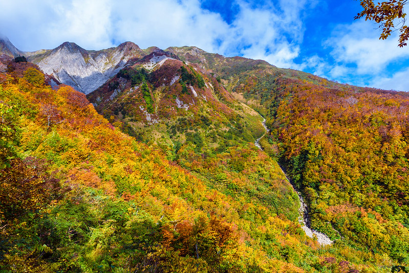 Mountain of autumn leaves at Mt.Amakazari NAGANO 2018