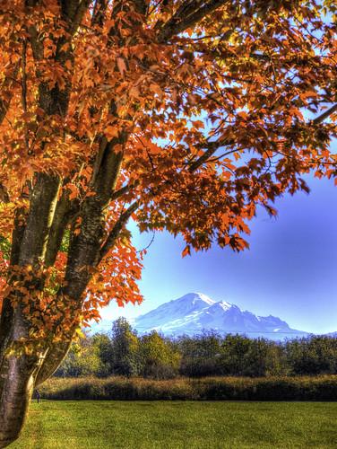 usa washingtonstate ferndale fallcolor mountains hdr mtbaker