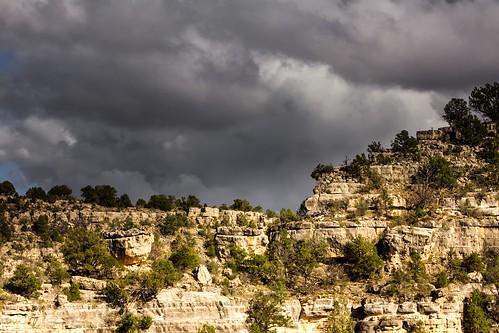 walnutcanyon walnut canyon arizona cliff cliffdwellings forest hiking nationalmonument