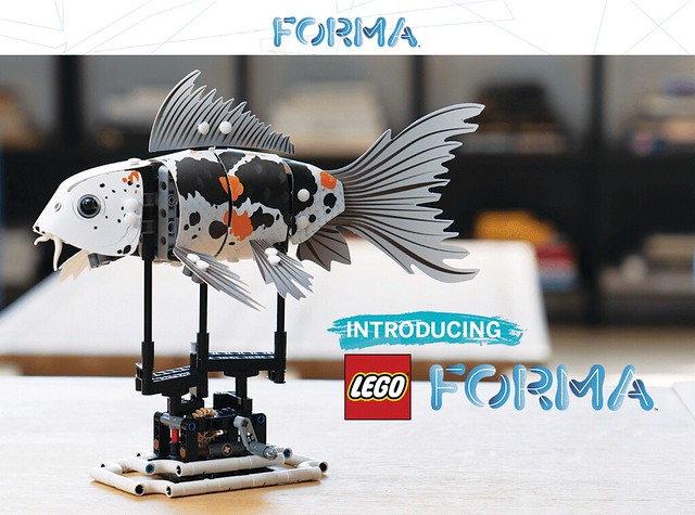 LEGO FORMA  (1)