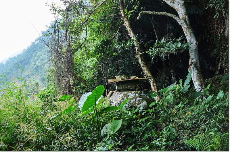 小林山產道蜂巢