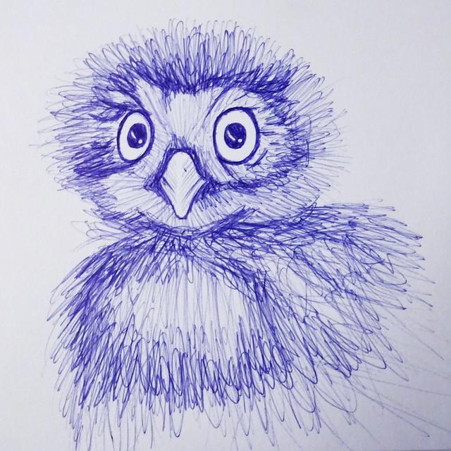 Weak & Owl