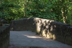 Schatten - Schadow