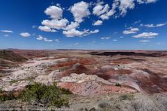 Petrified Forest National Park. Arizona