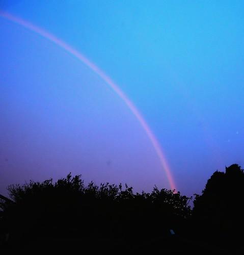 Rainbow DSCN8998d
