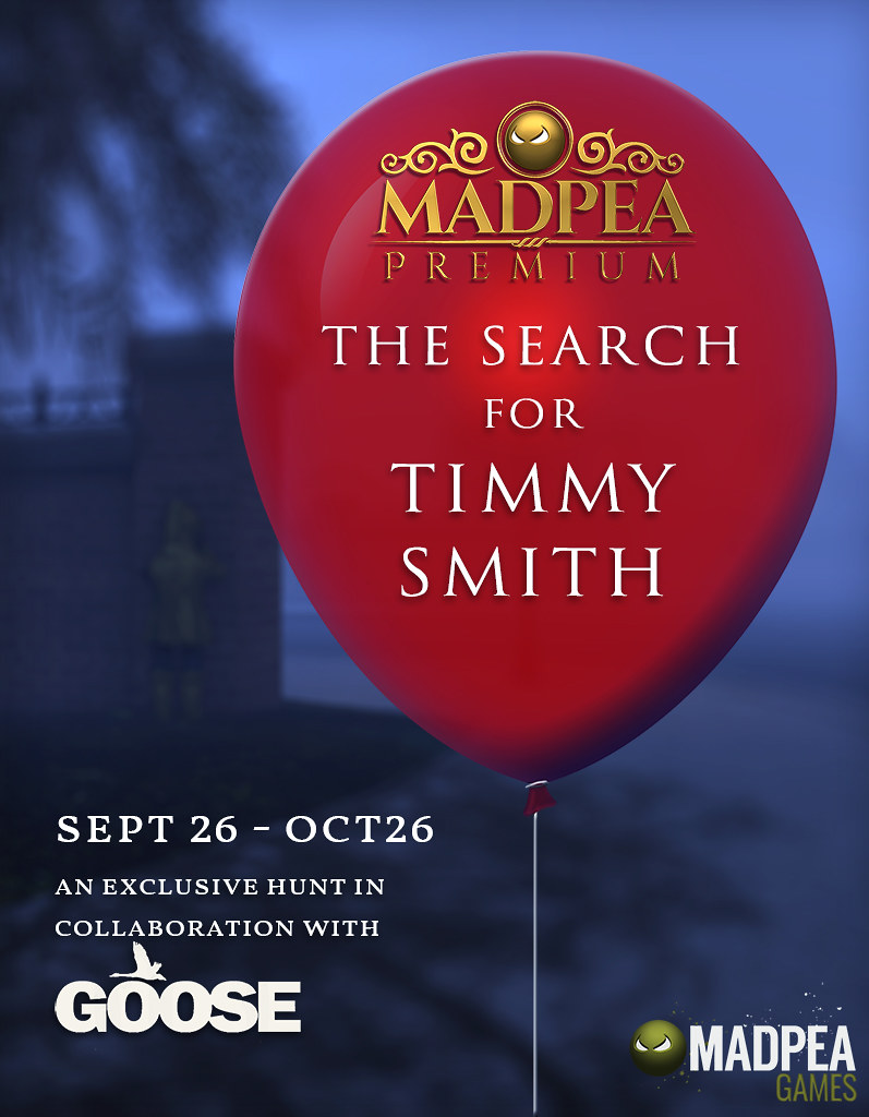 The Search for Timmy Smith Poster