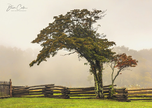 fog fence blue ridge parkway virginia road travel highway