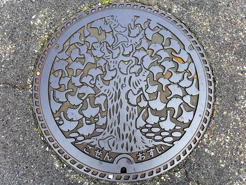 Gosen Nigata, manhole cover 3 (新潟県五泉市のマンホール3)