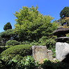 Photo:Japanese style garden / 日本庭園(にほんていえん) By TANAKA Juuyoh (田中十洋)