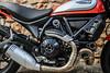 Ducati SCRAMBLER 800 Icon 2019 - 30