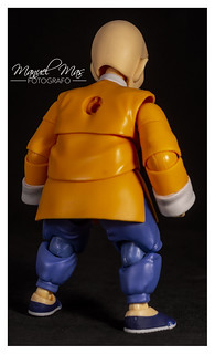 Review 121 - Muten Roshi [S.H.Figuarts] 30060650817_1fb0bf4ed7_n