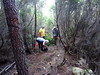 Chemin de Paliri historique : travaux de la matinée